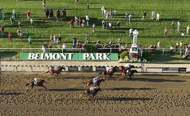 horse racing act sports gambling model