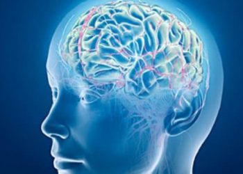 Sports Betting Causes Our Brains to Release Dopamine, Which in Turn Makes Us Want to Bet Again and Again.
