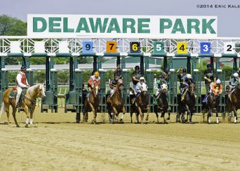 Delaware Park Sports Betting