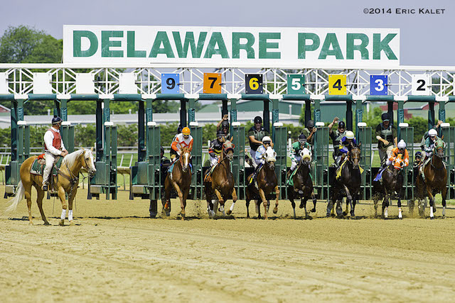 casino at delaware park sports betting
