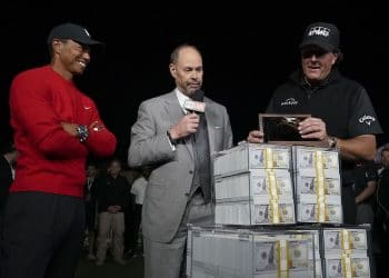 tiger phil betting information