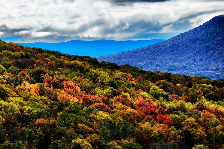 Blue-Ridge-Mountains-Virginia