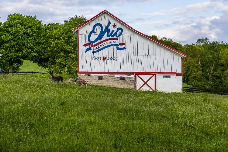 Ohio-Barn-Centennial-Logo