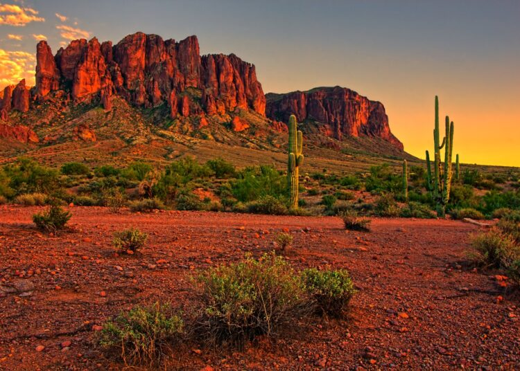 Arizona-Butte-Cactus-Sunset
