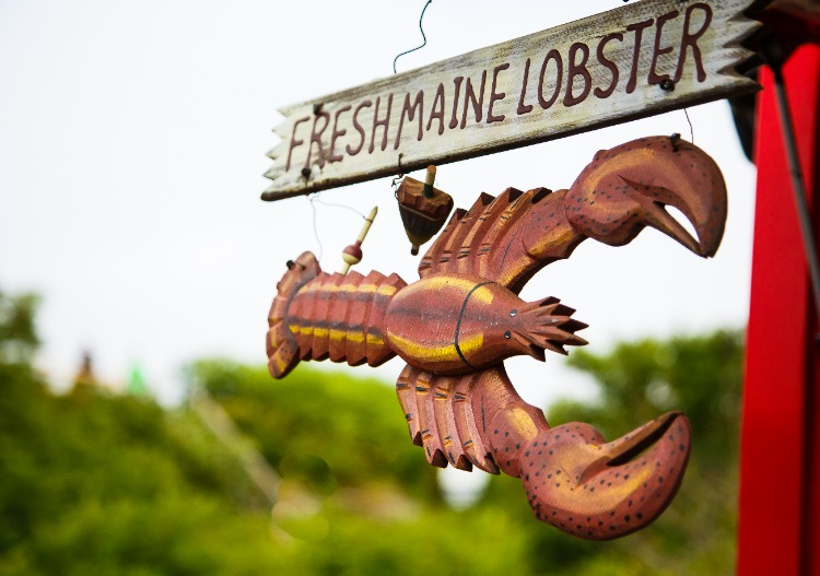 Fresh-Maine-Lobster-Sign