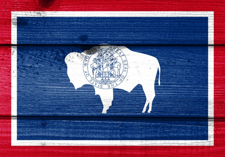 Wyoming-State-Seal-Painted