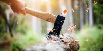 axe chop wood